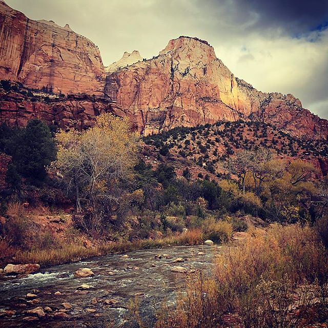 My Day in Zion #3